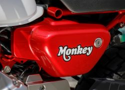 Honda Monkey 2018 bei Auto Stahl Rot