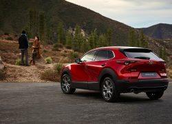 Mazda CX-30 schräge Heckansicht, Natur, Modellfarbe rot